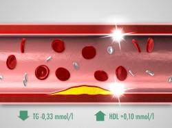 Glenmark / pladizol 3D vizualizace (pladizol01.jpg)